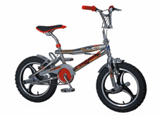 "16""freestyle bicycle"